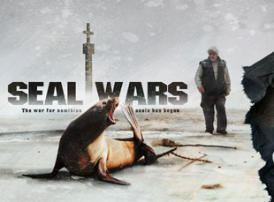 seal_wars_featured_image
